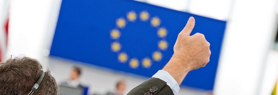 @European Parliament